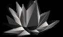 Black Lotus Marketing